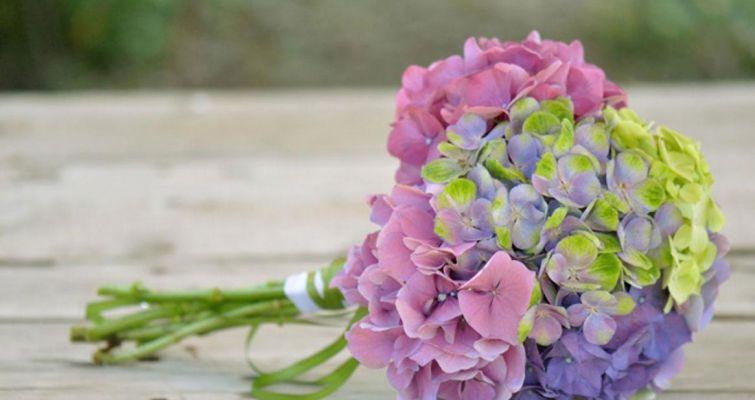 00009-bouquet581C0BAE-FE06-9A7B-D0F7-3483CEA2612E.jpg