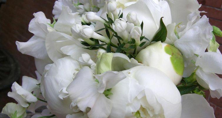 00012-bouquet830A77C1-A0C3-55D9-E36F-F8B70EC91D14.jpg