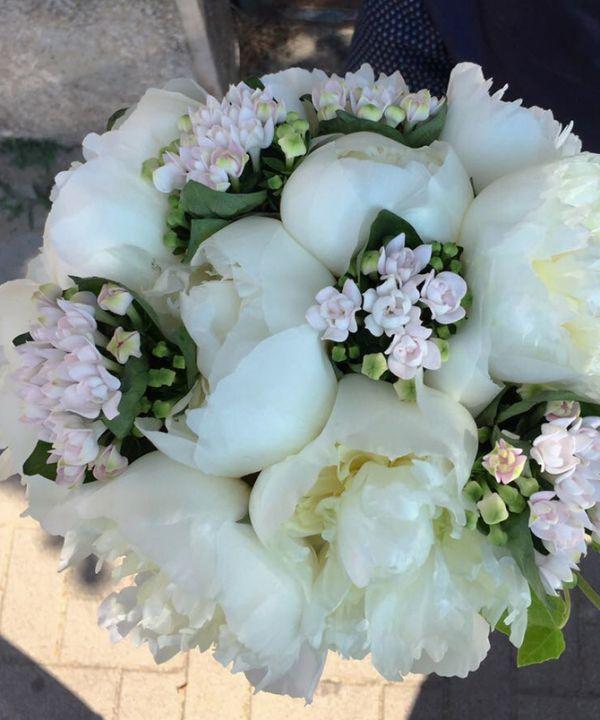 00022-bouquet5A150195-2AF9-EB29-DBAC-EA5EE3C00EF5.jpg